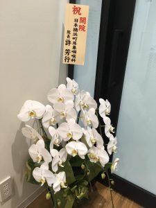 京都駅前耳鼻咽喉科アレルギー科クリニック